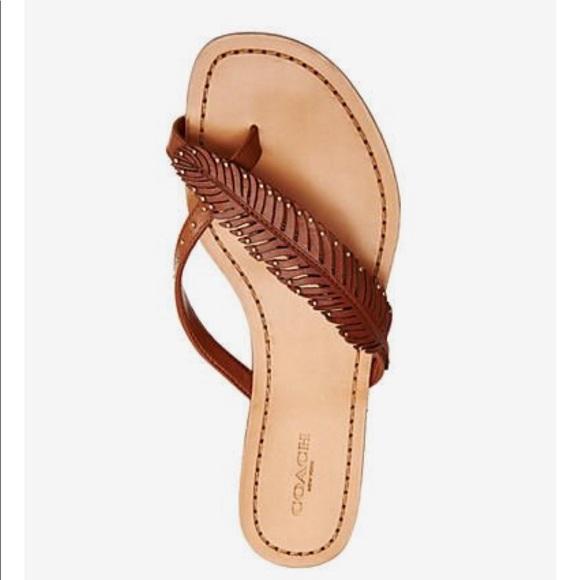 733d9becf012b6 Coach Shoes - 🎈 SALE🎈NWOT Coach 8.5 Brown Deni Feather Sandal